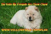 Of Yellowfield-Chows